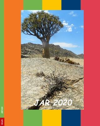 JAR 2020 - Zobrazit knihu