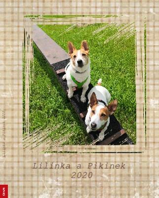 Lilinka a Pikinek 2020 - Zobrazit knihu