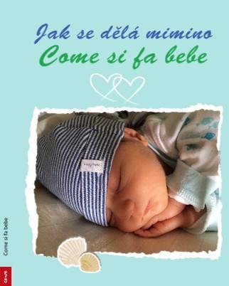 Come si fa bebe - Zobrazit knihu