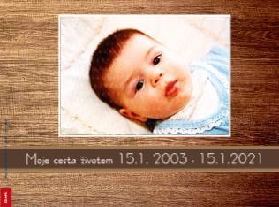 Moje cesta životem 15.1. 2003 - 15.1.2021 - Zobrazit knihu