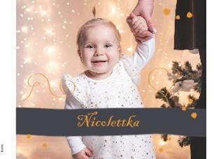 Nicolettka - Zobrazit knihu