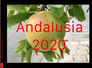 Andalusia 2019 - Zobrazit knihu