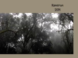 Kamerun - Zobrazit knihu