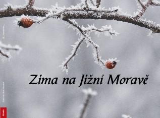 Zima na Jižní Moravě - Zobrazit knihu