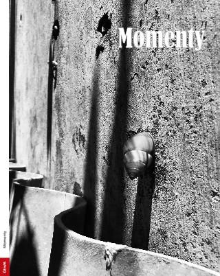 Momenty - Zobrazit knihu