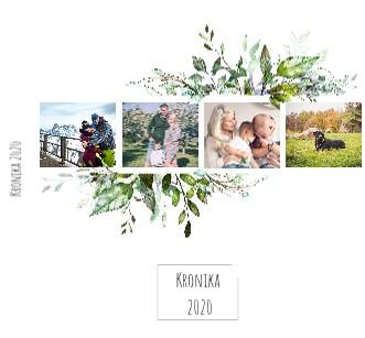 Kronika 2020 - Zobrazit knihu