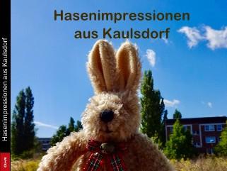 Hasenimpressionen aus Kaulsdorf - jetzt anschauen