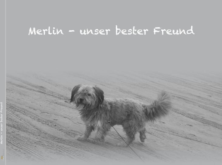 Merlin - unser bester Freund