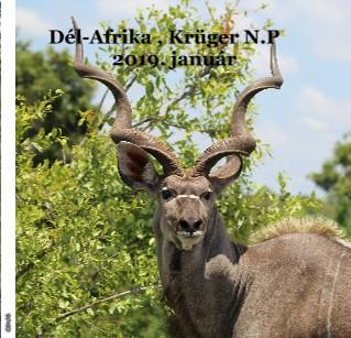 Dél-Afrika , Krüger N.P 2019. január - Megtekintés