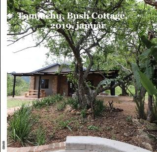 Tomjachu, Bush Cottage, 2019. január - Megtekintés