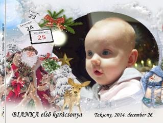 BIANKA első karácsonya * Taksony, 2014. december 26. - Zobraziť fotoknihu