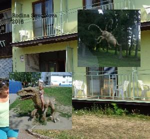 Rodina Sevcikova 2016 - Zobraziť fotoknihu