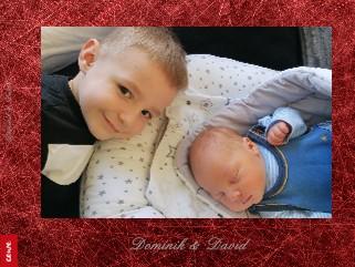 Dominik & David - Pregled
