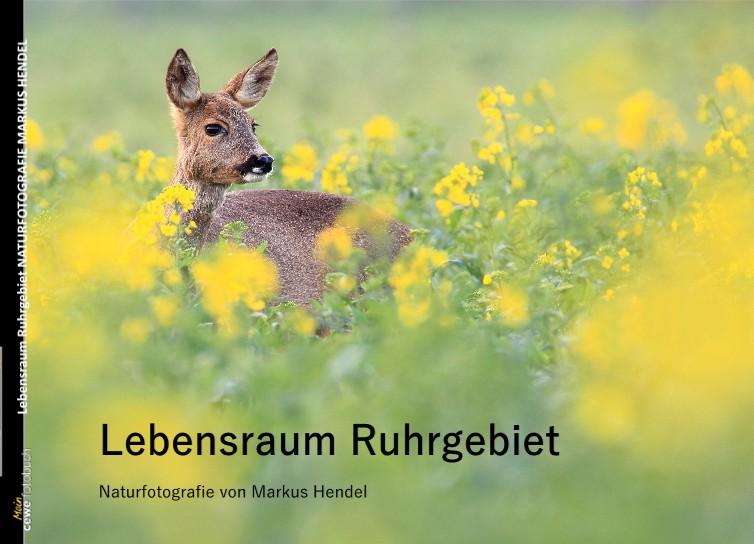 Lebensraum Ruhrgebiet NATURFOTOGRAFIE MARKUS HENDEL