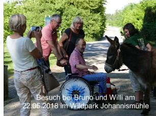 Besuch bei Bruno und Willi am 22.05.2018 im Wildpark Johannismühle - jetzt anschauen