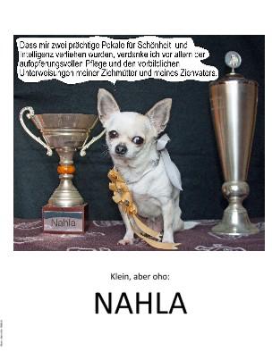 Klein, aber oho: NAHLA - jetzt anschauen