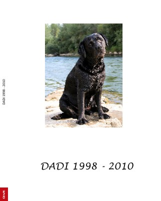 DADI 1998 - 2010 - Pokaži knjigo