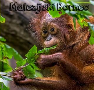 Malezijski Borneo 2018 - Pokaži knjigo