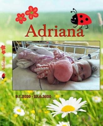Adriana - Pokaži knjigo