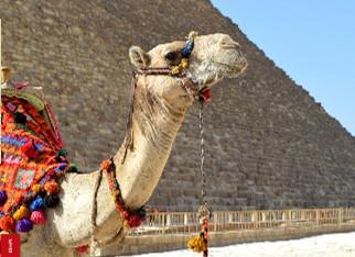 Egypt - Pregled