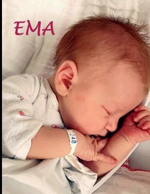 EMA - Pregled