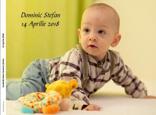 Harbădă Gera Dominic Ştefan 14 Aprilie 2018 - Vizualizare