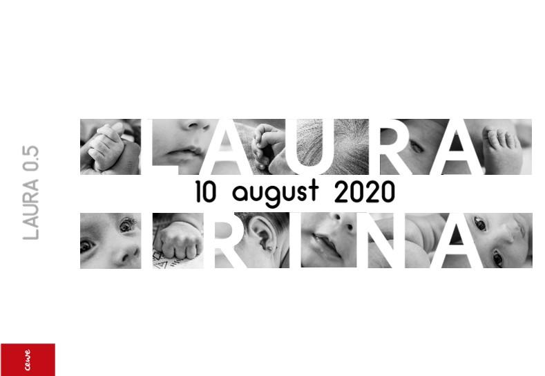 LAURA 0.5
