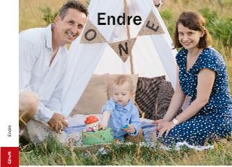 Endre - Vizualizare