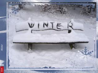 Winter - jetzt anschauen