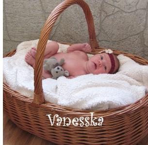 Vanesska - Zobrazit knihu