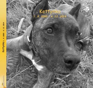 Kettynka 1. 9. 2000 - 4. 12. 2014 - Zobrazit knihu