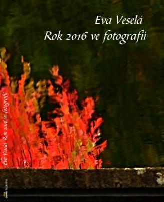 Eva Veselá Rok 2016 ve fotografii - Zobrazit knihu