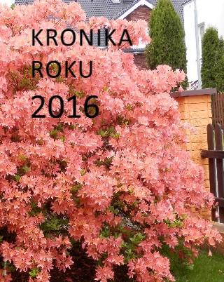 Kronika roku 2016 - Zobrazit knihu