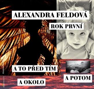 Alexandra Feldová ... Rok první - Zobrazit knihu