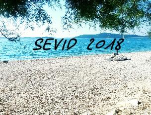 SEVID 2018 - Zobrazit knihu