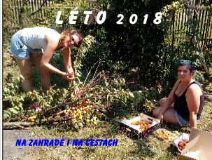 L É T O 2 0 1 8 - Zobrazit knihu