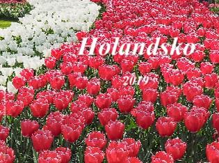 Holandsko - duben 2019 - Zobrazit knihu