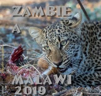 AFRIKA 2019 Zambie a Malawi - Zobrazit knihu