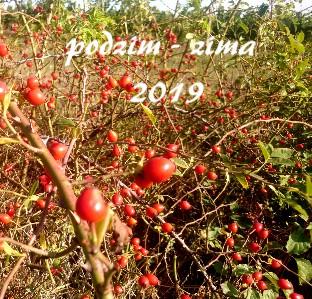 podzim - zima 2019 - Zobrazit knihu