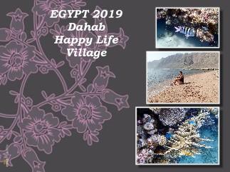 EGYPT 2019 Dahab Happy Life Village - Zobrazit knihu
