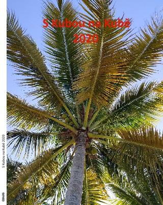 S Kubou na Kubě 2020 - Zobrazit knihu