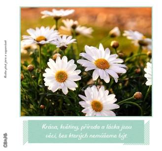 Kniha plná jara a vzpomínek - Zobrazit knihu