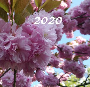 2020 jaro - Zobrazit knihu
