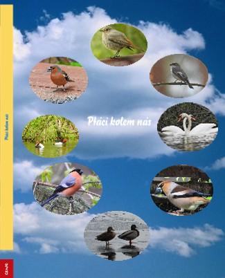 Ptáci kolem nás - Zobrazit knihu